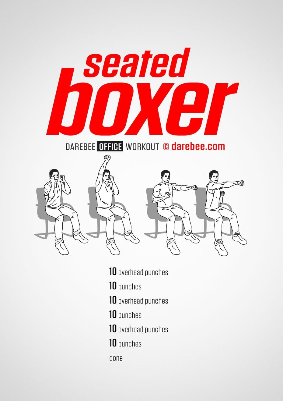 how to boxers train daily