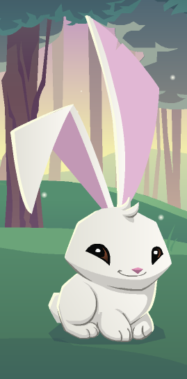 Bunny I Like This It Is Cute Animal Jam Codes Animal Jam