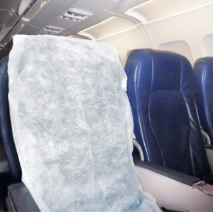 Bed Bugs on Airplanes?! Yikes! How to Fly Bed BugFree