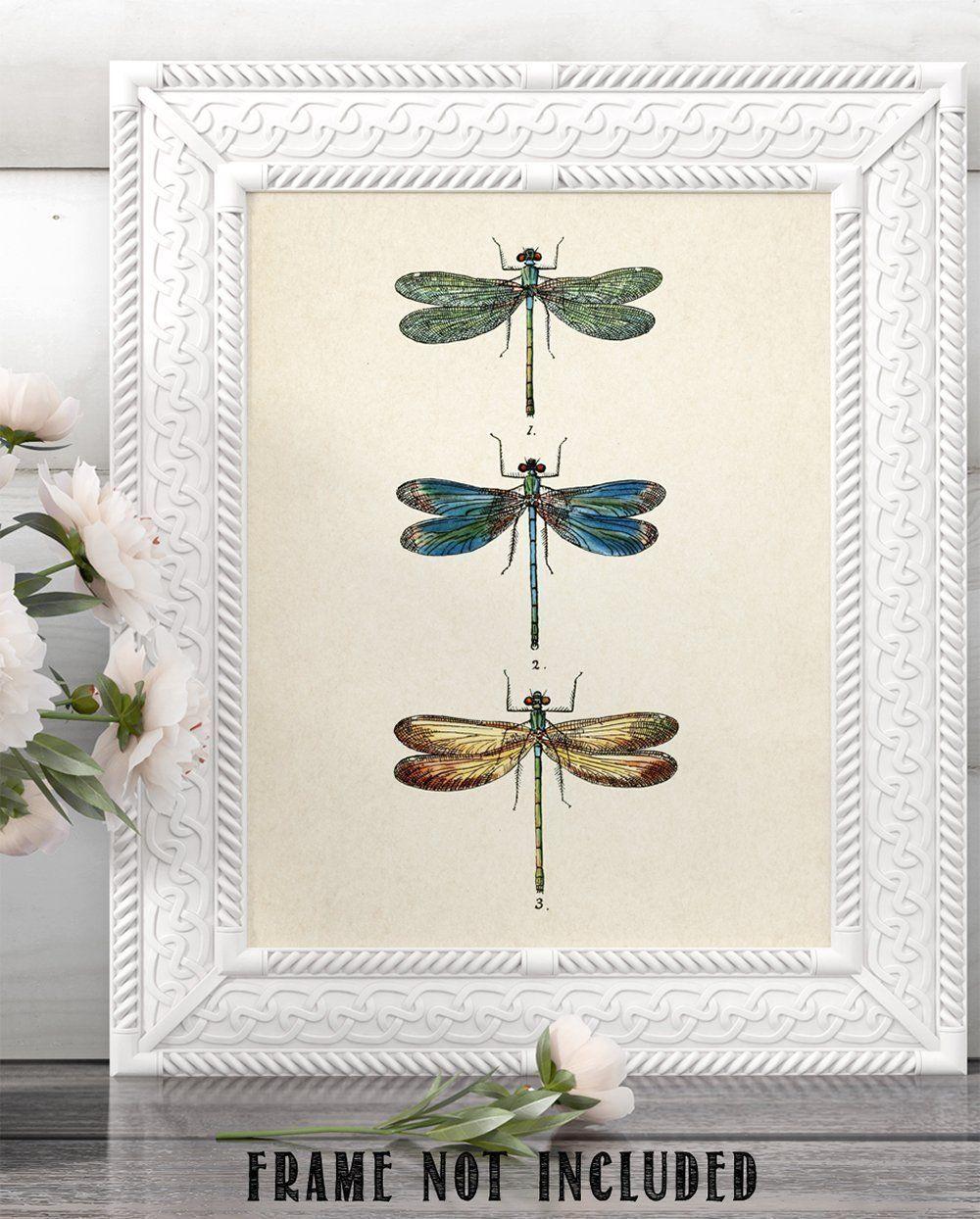Dragonflies artwork 11x14 unframed art print great gift