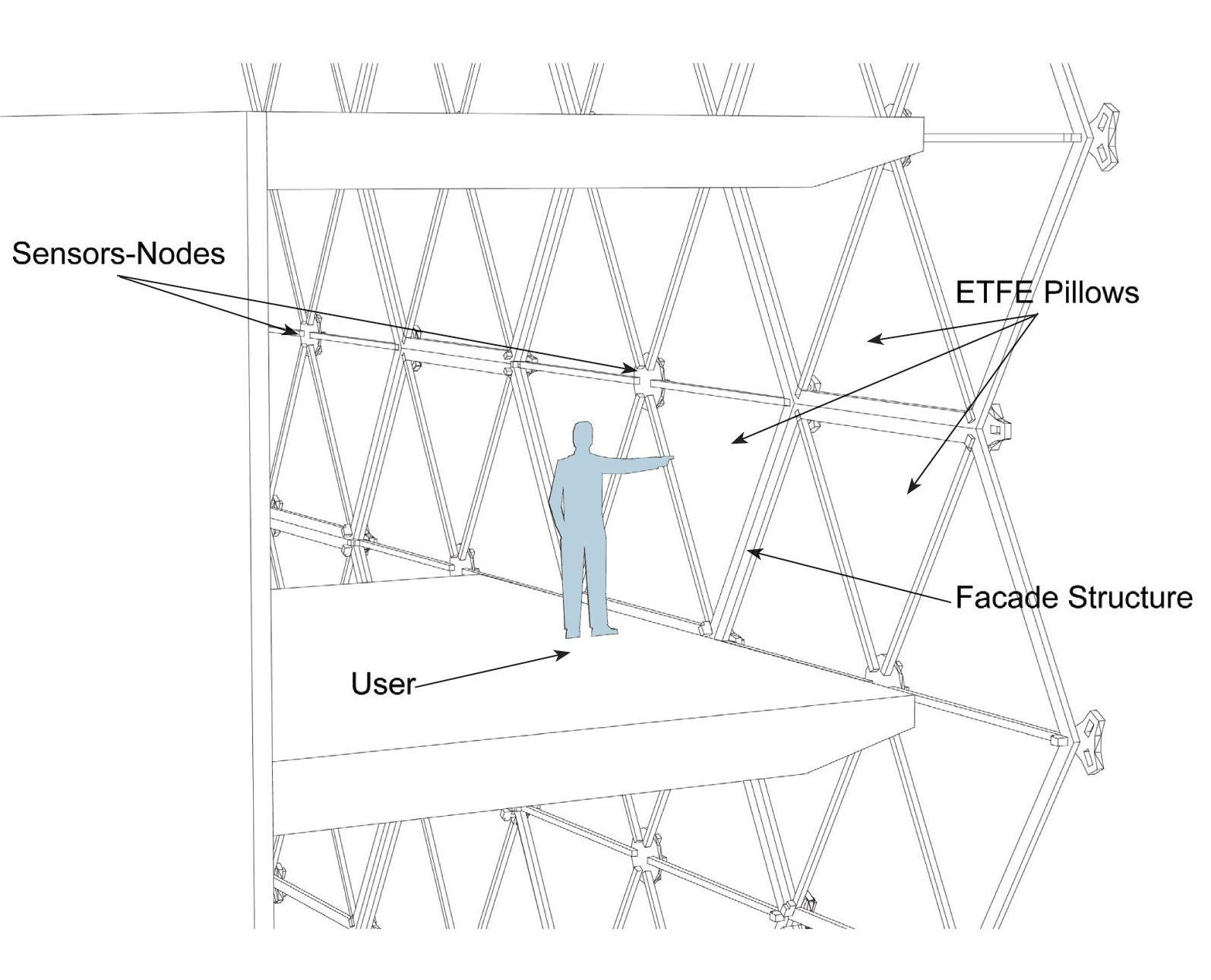 etfe section
