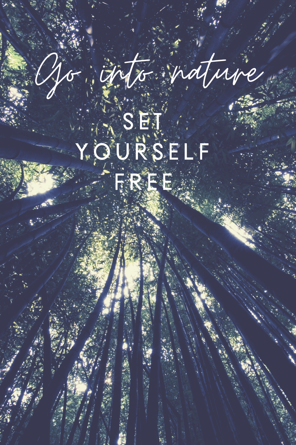 Go Into Nature. Let nature guide, soothe and heal. Let go and breathe it in. Set yourself Free. #nature #keepitsimple #dailyreminders #healingenergy #setyourselffree #healing #reminder #selfcare #selflove #timeout #breathe