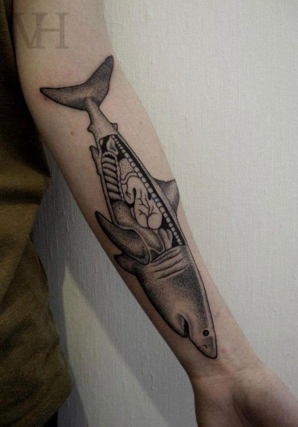 Tatuagem Tubarão Anatomia | Tattoo Black and Gray | Pinterest ...