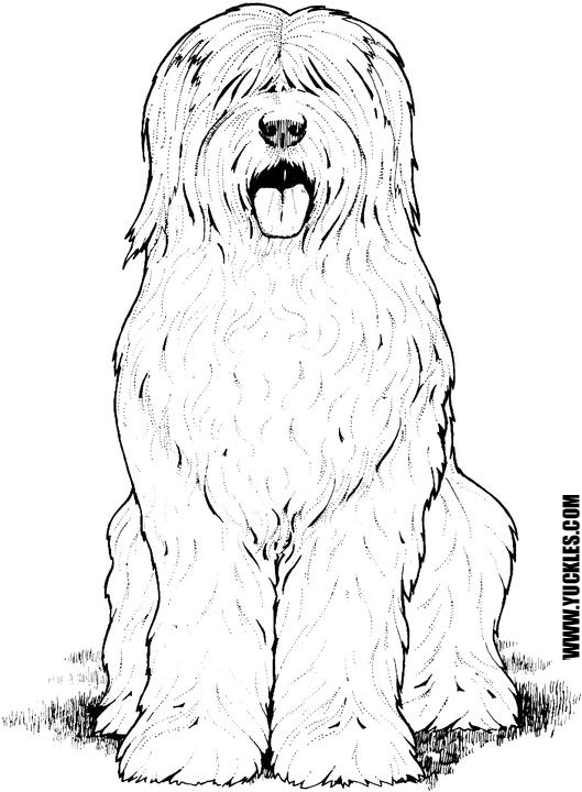 Old English Sheepdog Coloring Page By Yuckles Dog Coloring Page Hairy Dog Old English Sheepdog