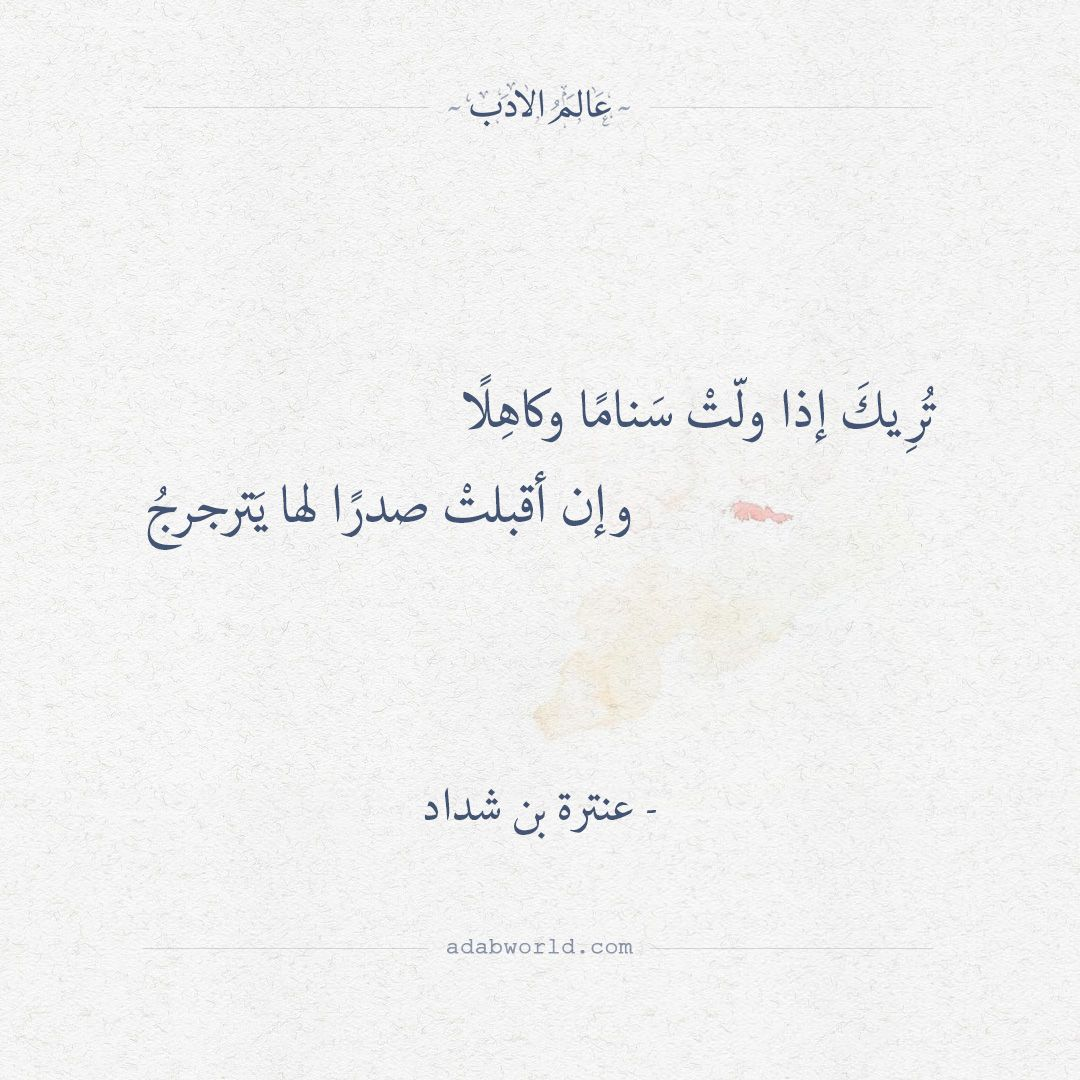 تريك إذا ولت سناما وكاهلا عنترة بن شداد شعر Arabic