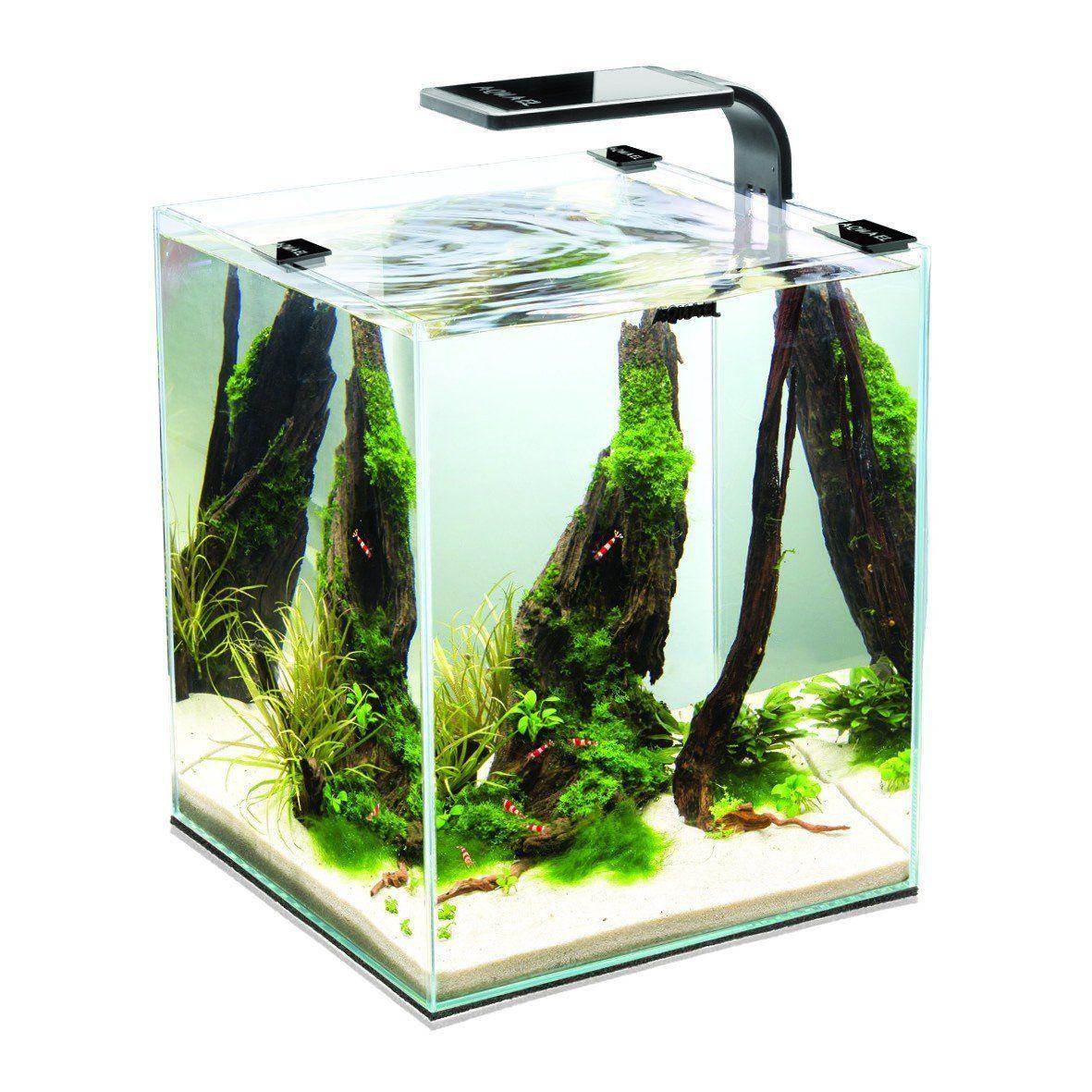 Aquael 5905546191425 Aquarium Shrimp Set Smart Led Komplett Set Mit Morderner Led Beleuchtung Amazon De Hau Nano Aquarium Aquael Aquarium Kleines Aquarium