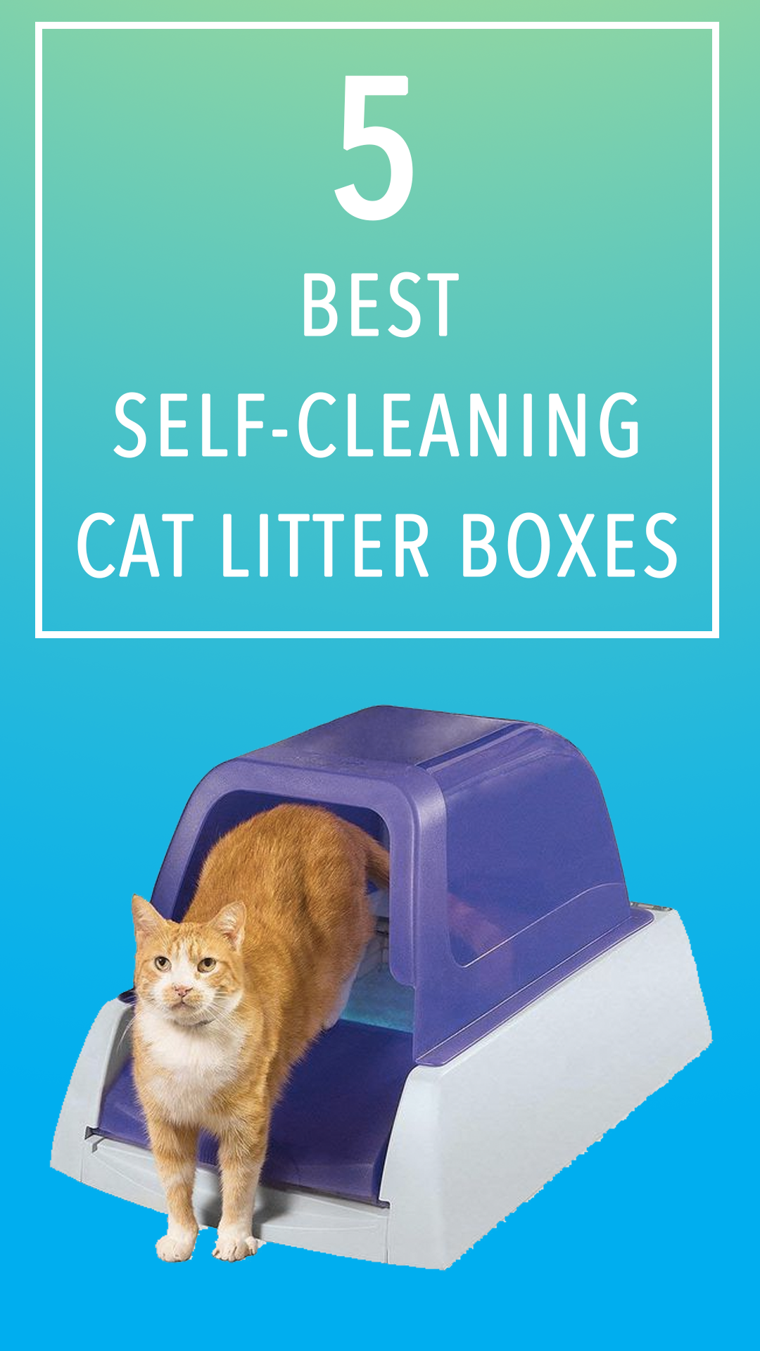 5 Of The Best Self Cleaning Cat Litter Boxes In The Uk Best Small Pets Cat Litter Box Litter Box