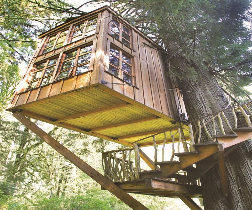 21+ Best DIY Tree House Design Ideas For Child Adult