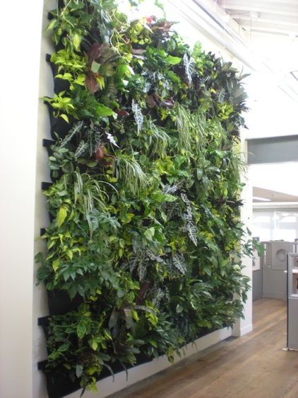 Inside garden( or herb) wall created with Woolly Pockets - jardineras verticales