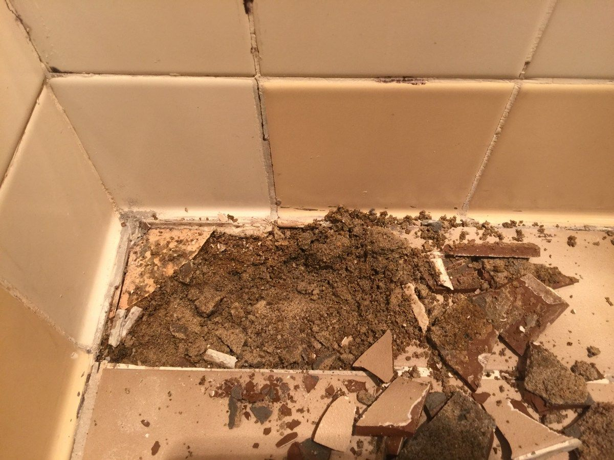 Maintenance Free Shower Floor Epoxy Bond Grout Repair Shower Floor Epoxy Floor