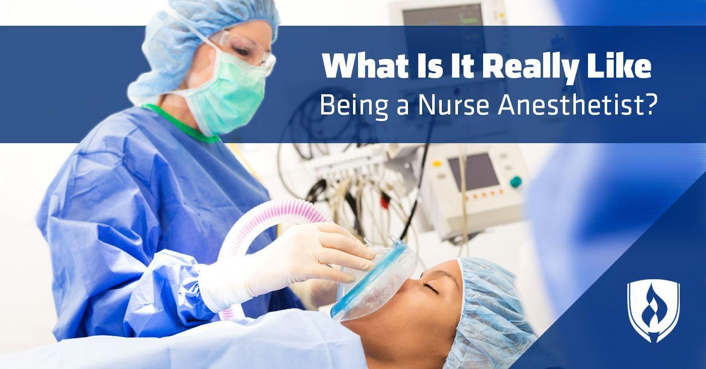 4 week certificate programs nursingprograms di 2020
