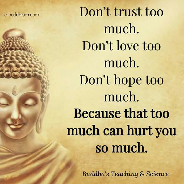 Buddhist Quotes On Time: Pin On Lotus