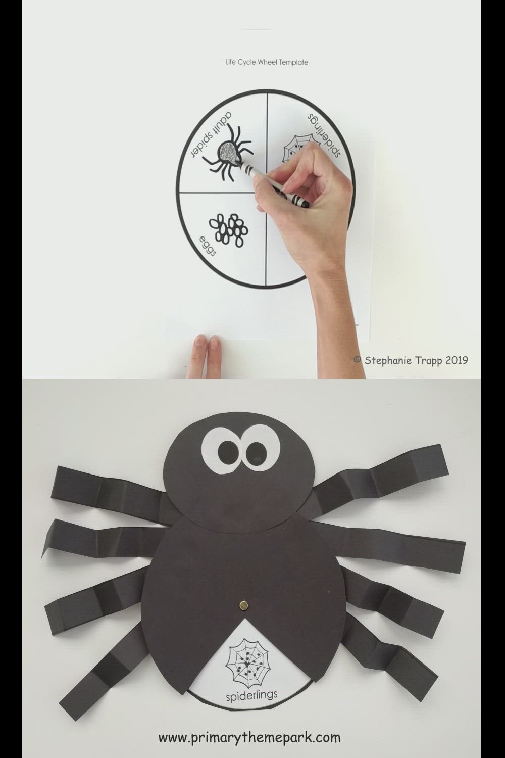 Spider Life Cycle Craft Video Video Life Cycle Craft Life Cycles Spider Crafts [ 1500 x 1000 Pixel ]