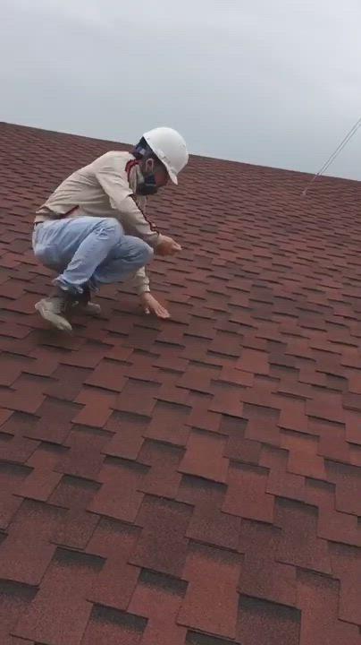 Muti Layer Retail Asphalt Roofing Shingles Price From Fiberglass Shingles Roofing Materials Video In 2020 Fiberglass Shingles Roof Shingles Asphalt Roof Shingles