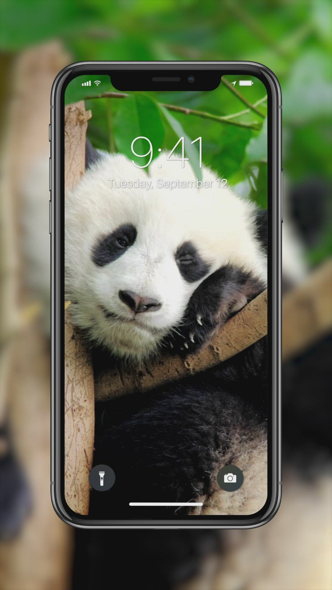 Amazing Live Wallpapers Liven Up Your Screen Now Video Live Wallpapers Apple Wallpaper Live Wallpaper Iphone