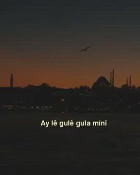 Ay Le Gule Gulamine Video In 2021 Celestial Sunset Celestial Bodies