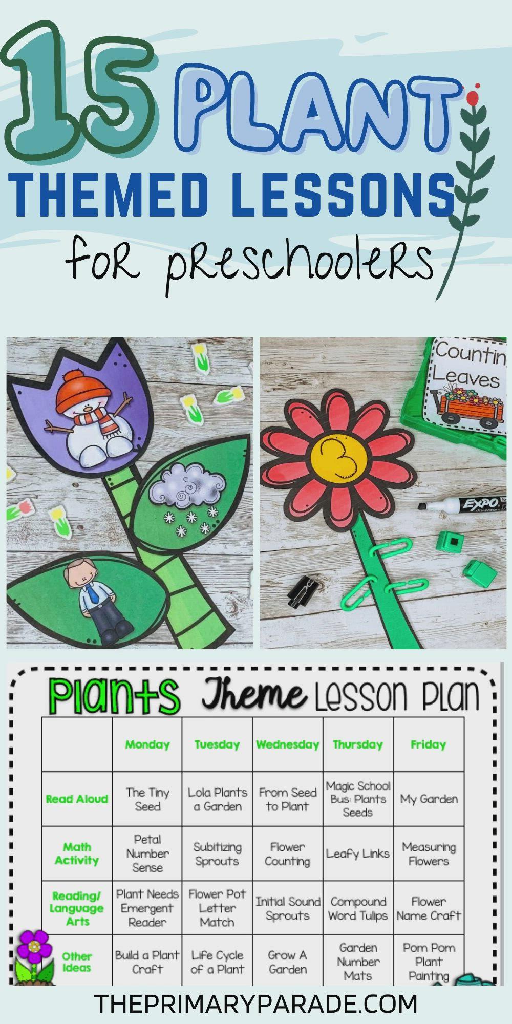 Preschool Plant Activities Video Video In 2021 Plant Activities Math Activities Preschool Plant Lessons [ 2000 x 1000 Pixel ]