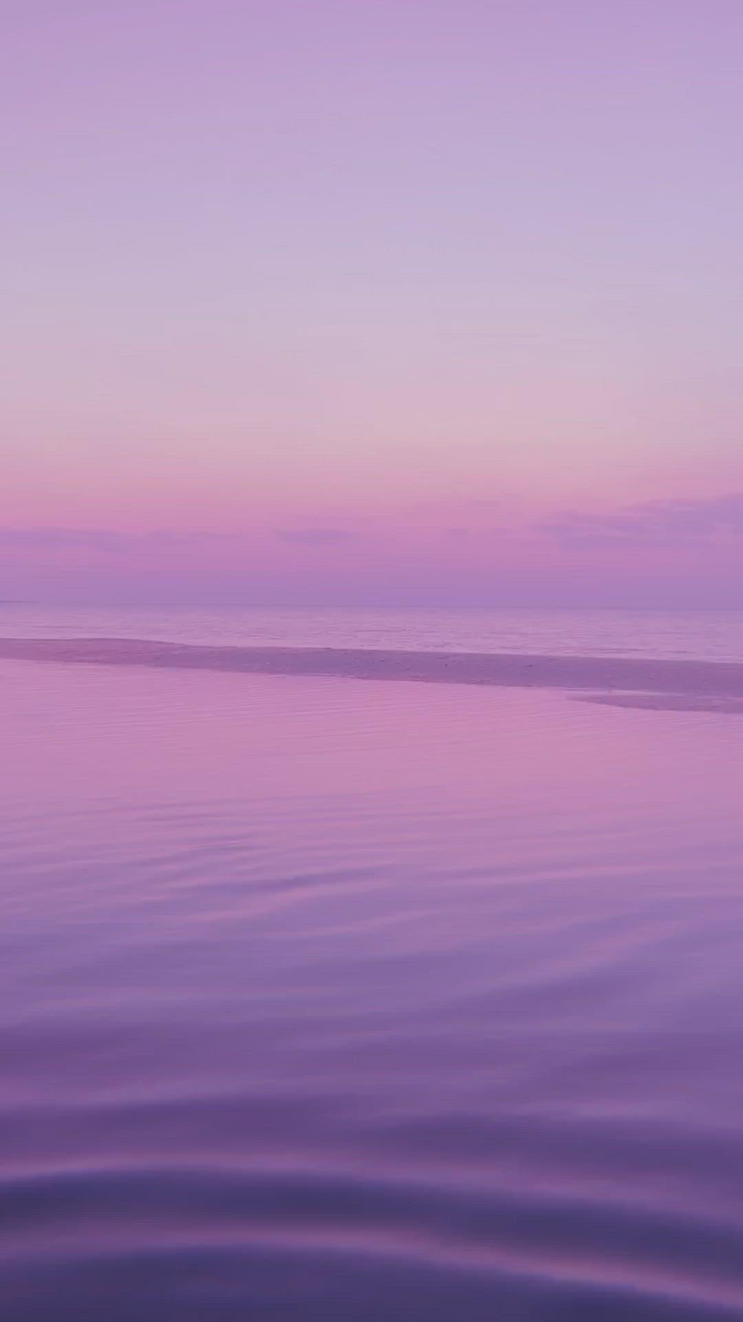 Pink Sunset Aesthetic Video Sunrise Photography Sunset Photography Conceptual Art