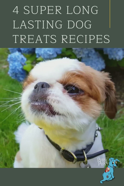 Pin On Dog Treat Recipes