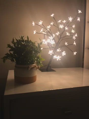 18 Inch Cherry Blossom Bonsai Tree 48 Led Lights 24v Ul Listed Adapter Included Metal Base Video Cherry Blossom Bonsai Tree Bonsai Tree Amazon Home Decor