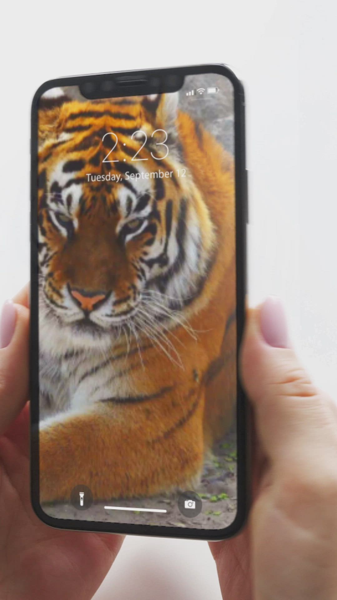 Incredible Live Wallpapers For You Iphone X Xs Xs Max Video