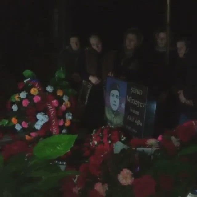Mirzeyev Nuran Video In 2021 Aquarium