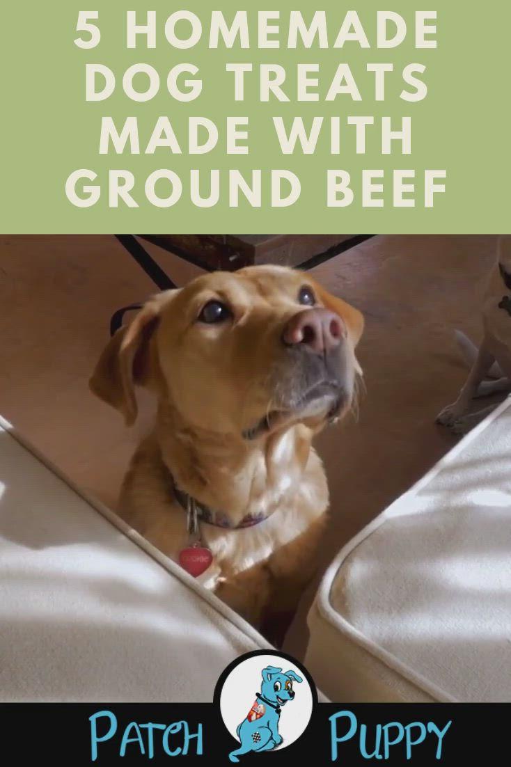5 Homemade Dog Treats Made With Ground Beef Video In 2020 Dog Treats Homemade Dog Treats Dog Jerky Recipe