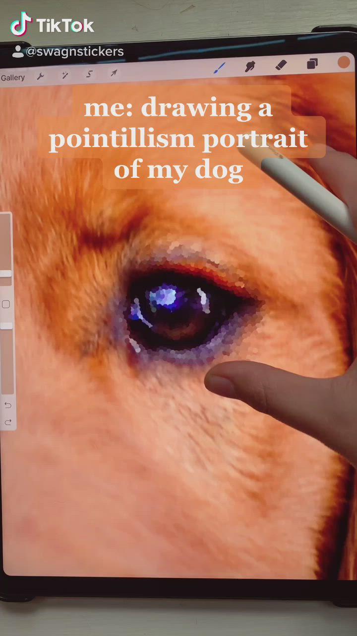 What S Poppin Tiktok Video Dogs Digital Illustration Digital Drawing