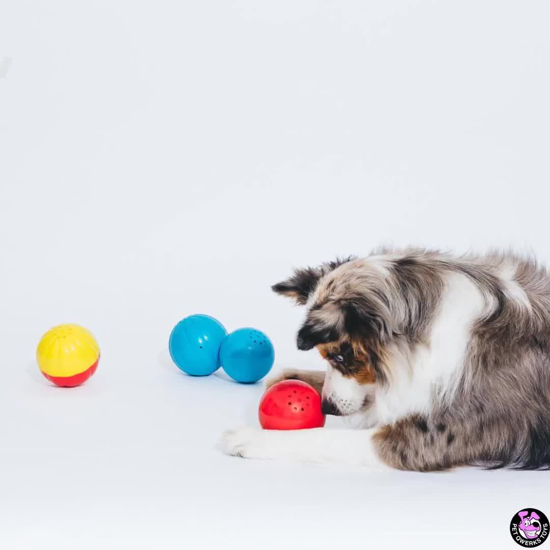Pin On Babble Balls Interactive Dog Toys
