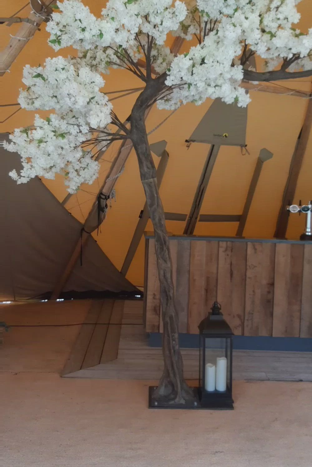 Beautiful Canopy Blossom Trees Available To Hire For Your Special Day Video Blossom Trees Wedding Wishing Tree